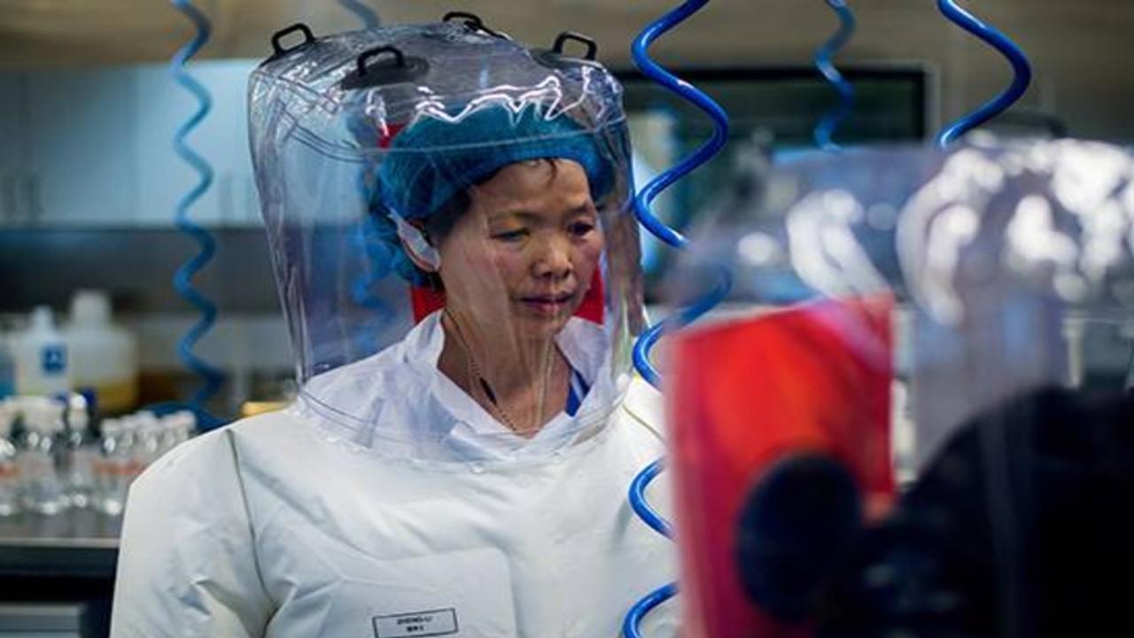 चीनी विशेषज्ञों ने कहा अज्ञात वायरसों और हो सकता है हमला,कोरोना छोटा मामला